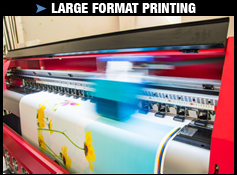 Copy Central Glendale | Large Format Printing